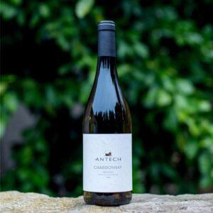 Chardonnay Maison Antech